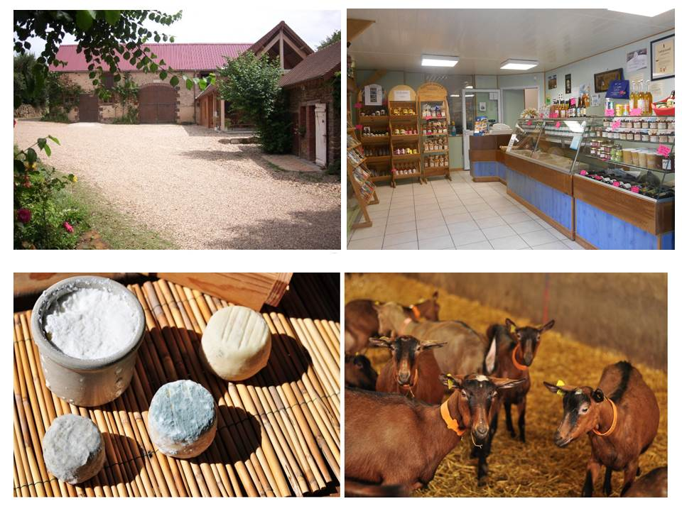 ELEVAGE CAPRIN, TRANSFORMATION FROMAGERE,  FERME PEDAGOGIQUE, CHAMBRES D HOTE